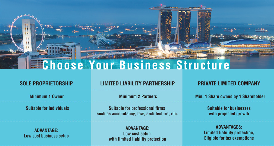 Main Business Structures in Singapore (click for bigger view)